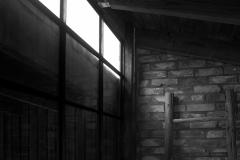 fönsteritaketväxthus